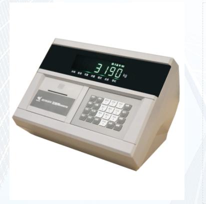 数字称重仪表XK3190-DS10